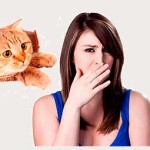 Запах пота напоминает кошачью мочу – что это означает и как избавиться от проблемы